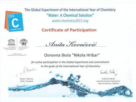 globalni projekt1